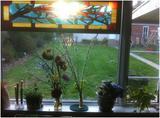 寄宿家庭窗边小物件.jpg